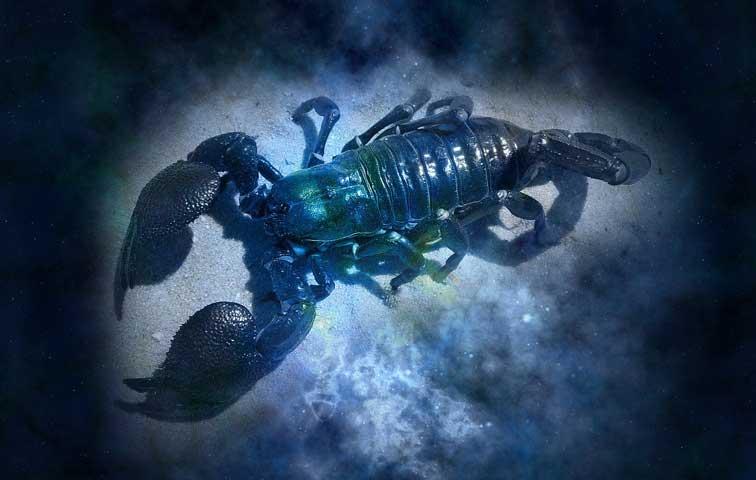 Scorpion : Horoscope du jour